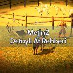 metin2 at rehberi